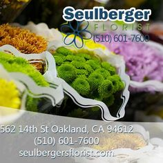 Oakland Florists - Flowers in Oakland CA - Seulberger's Florist & Gifts Fresh Flower Delivery, Extra Mile, Order Flowers, Local Florist, Prompt, Sd, Floral Arrangements, Have Fun, Toms