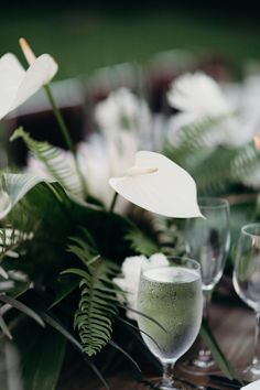 Wedding centerpiece, white anthurium flowers. Tropical Wedding Reception, Coconut Drinks, Parker Palm Springs, Traditional Indian Wedding, Destination Wedding Inspiration, Tropical Leaves, Wedding Centerpieces, Table Decorations, Flowers