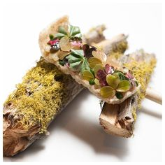 "511 Likes, 4 Comments - FOUR Food - Lifestyle (@four_magazine) on Instagram: ""Maitake Crunch, Ramp & Oxalis by Anthony Martin. Chef of the Year by Chicago Tribune marked Anthony…"""