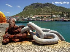 The Firefly Photo Files: April 2012 Fishing Villages, The Locals, Chains, South Africa, Nautical, Cape, African, Travel, Navy Marine