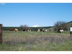 KNIGHT RD, GOLDENDALE, WA 98620 ⋆ Klickitat County Land Sales, Real Estate Services