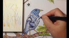 The 20 Best Derwent Inktense Pencils Images On Pinterest