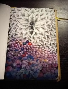 bee on blueberries
