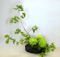 simple green ikebana
