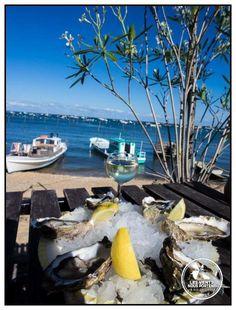 Déguster des huîtres et un bon Blanc sec, les pieds dans l'eau, Bassin d'Arcachon #France