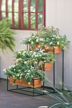 Self Watering Cascade Planter 3-Tier | $149 | I'd use it to grow kitchen herbs and lettuces just outside my door