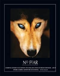 no fear - Google zoeken