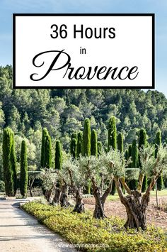 Lady's Secret Guide to 36 Hours in Provence