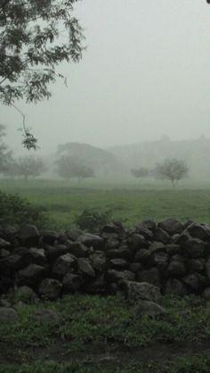 Neblina en el rancho las higueras