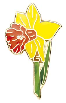 New Daffodil pins available in stock for same day dispatch #daffodilpins #pins #pinbadges #enamelpins #pingame #pingamestrong
