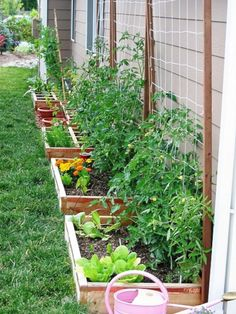 If space is an issue the answer is to use garden boxes. In this article we will show you how all about making raised garden boxes the easy way. We all want to make our gardens look beautiful and more appealing. Backyard Vegetable Gardens, Veg Garden, Vegetable Garden Design, Garden Types, Outdoor Gardens, Vegetables Garden, Fresh Vegetables, Verticle Garden, Vertical Vegetable Gardens