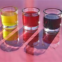 Pflanzenfarben selber machen  Selbstgemachte Pflanzenfarben