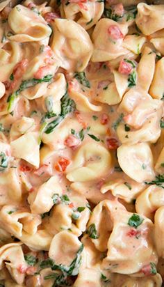 Creamy Spinach Tomato Tortellini Recipe ~ This one is far beyond good though, it is incredibly amazing! Not only that, but it was so quick and easy to prepare, you can have this ready in 20 minutes.