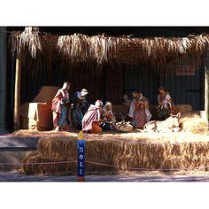 Nativity scene...Baby Jesus, Mary, Joseph, Three Kings, Camels, Shepards, Sheep, Ox/Cow and Donkey.