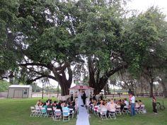 orlando fl wedding venues orlando orlando