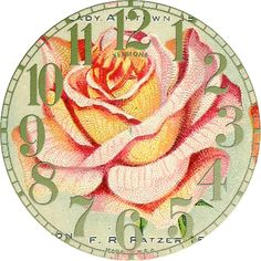 Antique Seed Catalog Reinvented: 1914 Miss Ella V. Baines Rose Clocks No 3 of 4