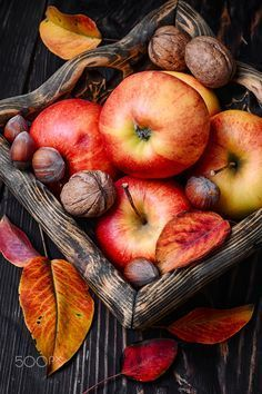 Basket of autumn apples - Stylish wooden basket with autumn harvest, red apples