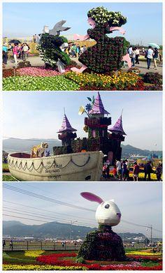Sea of Flowers in Xinshe, Taiwan, 2013.