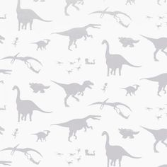 Boys Wallpaper Collection for the Nursery and Playroom | Nubie - Modern Baby Boutique