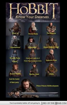 "The Hobbit: Know Your Dwarves.   This is hilarious because the ""weirdly Pretty Dwarf"" and the ""dwarf you'd settle for if Pretty Dwarf turned you down"" was exactly what was going through my head during the movie."