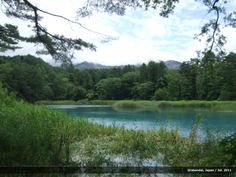 One of Goshikinuma lakes, Japan.