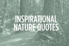 Nature Quotes, Inspirational, Inspiration