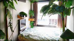 一泊3500円、那覇の「国際通り」に面した南国風のゲストハウス「ロハスヴィラ」に泊まってみた - GIGAZINE
