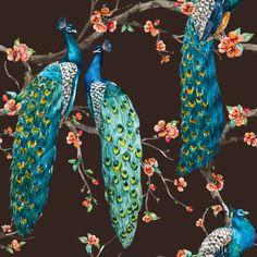 Trendy Ideas for mural wallpaper bedroom cherry blossoms Peacock Wallpaper, Wallpaper Iphone Love, Bird Wallpaper, Trendy Wallpaper, Blue Wallpapers, Photo Wallpaper, Pattern Wallpaper, Bedroom Wallpaper, Peacock Blue Bedroom