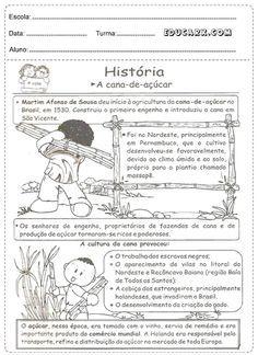 História: A cana-de-açúcar