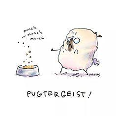 Just art & dog butts from here. Pug Illustration, Illustrations, Pug Cartoon, Pug Art, Brussels Griffon, Cute Pugs, Pug Love, Little Dogs, Painted Rocks
