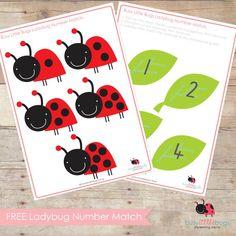 Lienky na listoch Ladybug Number Match (free; from Busy Little Bugs) Preschool Printables, Preschool Learning, Kindergarten Math, Preschool Crafts, Fun Learning, Learning Activities, Free Printables, Spring Activities, Toddler Activities