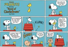 Snoopy will always protect his best friend Woodstock. Snoopy Love, Charlie Brown And Snoopy, Snoopy And Woodstock, Snoopy Comics, Peanuts Comics, Peanuts Thanksgiving, Snoopy Quotes, Peanuts Gang, Funny Cartoons
