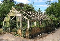 Destroyed: A millionaire property developer who pulled down this historic greenhouse with...