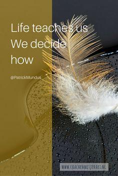 Life teaches us. We decide how ...