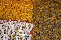 Sienten myynti voi olla kannattavaa.