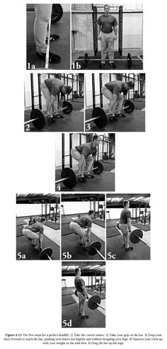 This is my HUSBAND!!! Its weird to find him on Pinterest! Check out Mark Rippetoe's Starting Strength: Basic Barbell Training, 3rd ed!