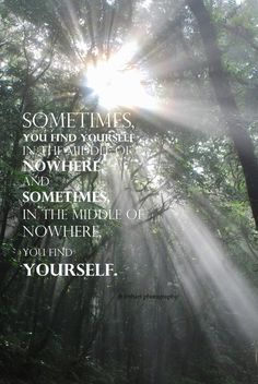 best rainforest quotes images quotes wilderness quotes john