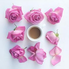 Today... coffee and lots of roses because we celebrate Sant Jordi  and is the most romantic day of the year!