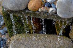 My Pond Waterfall