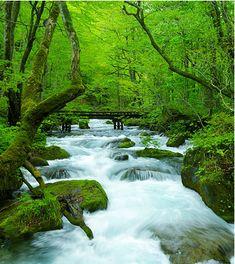 【公式】青森 温泉宿|星野リゾート 奥入瀬渓流ホテル Oirase,Aomori Japan Landscape, Fantasy Landscape, Beautiful Waterfalls, Beautiful Landscapes, Japan Places To Visit, Beautiful Places, Beautiful Pictures, Amazing Sunsets, Nature Pictures