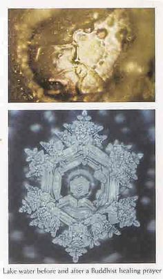 Lake Water before and after Buddhist blessing I read an awesome book about water molecules and their sensitivity to words/emotion Masaru Emoto Water, Hidden Messages In Water, Water Experiments, Structured Water, Losing My Religion, The Hierophant, Water Pictures, Divine Mother, Lake Water