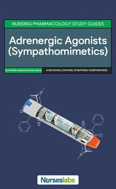 Antihypertensive - definition of antihypertensive by The ...