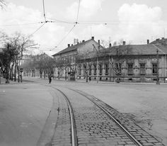Lenin körút a József Atilla sugárúttól nézve Old Photos, Landscapes, Louvre, Street View, City, Travel, Hungary, Old Pictures, Paisajes