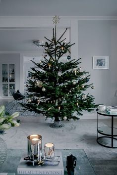 50 Minimalist Christmas Decorations That are Refreshing and Luxurious - Hike n Dip Here are best Minimalist Christmas decorations for your inspo. Simple & Natural Christmas decor are great for modern homes, small spaces or budget decors. Best Christmas Tree Decorations, Cool Christmas Trees, Natural Christmas, Christmas Mood, Noel Christmas, Holiday Decor, Christmas Tree Without Ornaments, Christmas Swags, Burlap Christmas