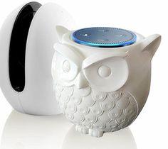 Owl Statue Amazon Echo Dot Guard Station