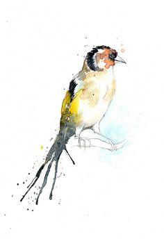 Watercolor bird.