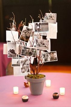 picture tree centerpiece