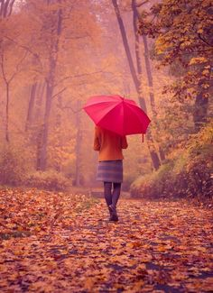 Autumn Walk With Red Umbrella