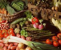 Jedlá zo zeleniny - FLORA.sk ( KVETY - ZÁHRADA - CHALUPA - LIFESTYLE - ZDRAVIE )