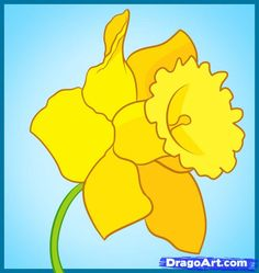 How to Draw a Daffodil... this entire pinterest board is awesome